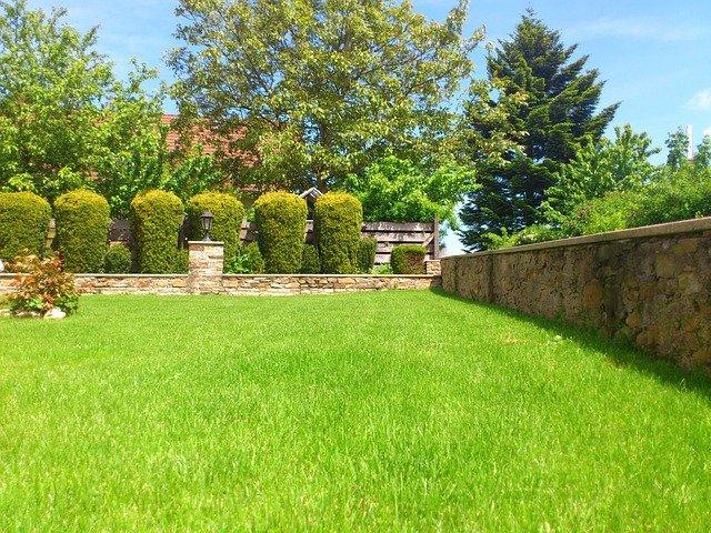 plot na zahradě