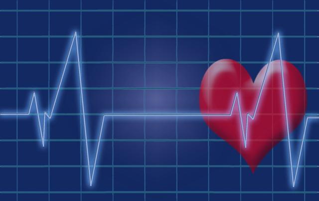 pulzy srdce.jpg