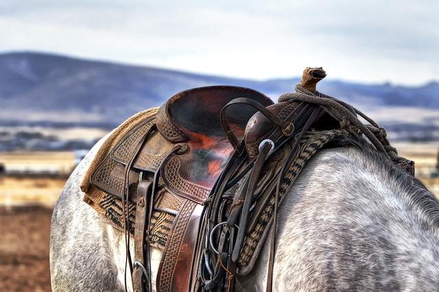 staré westernové sedlo na šedákovi