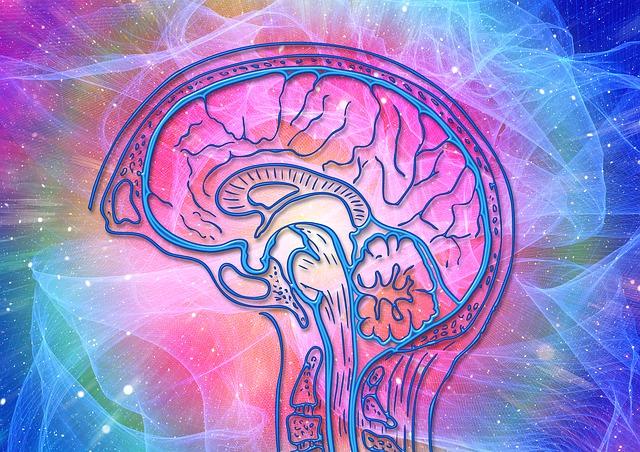 energie v mozku